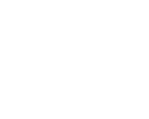 Perpetual Rhythms :: Wedding & Corporate Event DJ